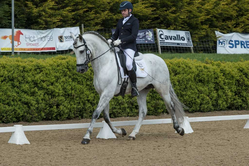 Keysoe BD Premier League Andalusian PRE