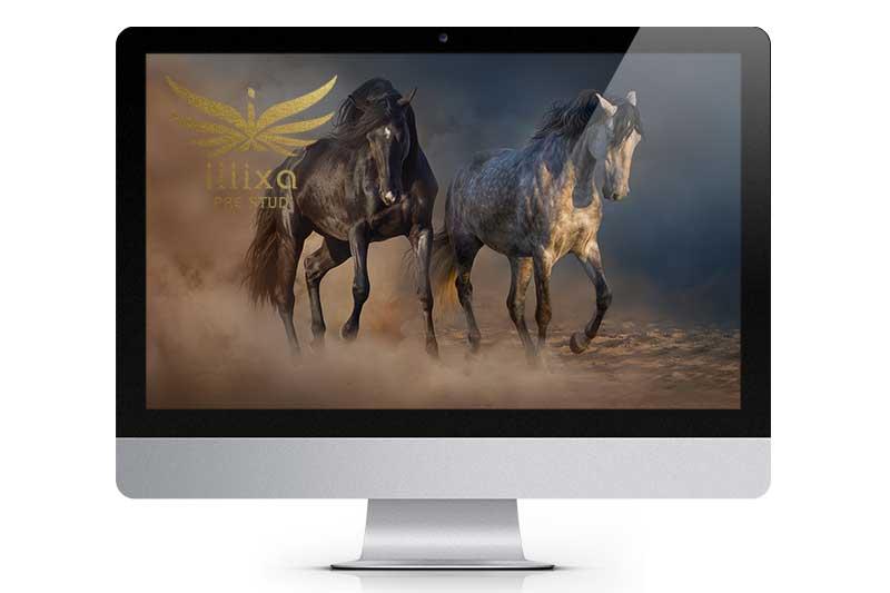 illixa Website
